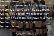 Volleyball :3