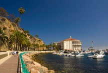 California Vacations / Need to just getaway? Come to California and choose from several beautiful Catalina Island vacation rentals. Find the best vacation lodging options that Catalina Island has to offer!