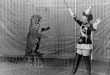19th C Circus