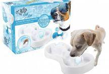 Kühlartikel für Hunde