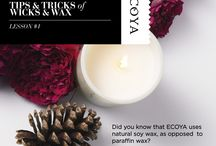 Tips & Tricks of Wicks & Wax / Some tips and tricks on how and where to burn your ECOYA candles. www.ecoya.com