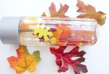 Autumn: Sensory Play / by Zookeeper