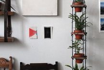 House plants / Househow do I arrange them around the house containers angers didn't
