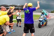 Tifosi MotoGP e F1