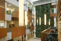 Architecture: Libraries