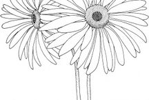 Coloring Pages 2 / Coloring Pages  / by Jennifer Colgan