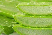 Receitas naturais / Uso para peel, cabelo e saúde