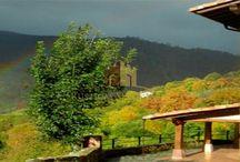 OTOÑO CON RUSTICAS SINGULARES / Imágenes de espacios naturales y propiedades donde disfrutar del el otoño