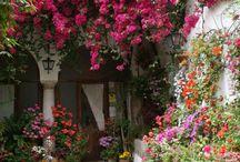 fairy-tale gardens