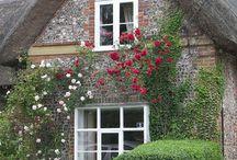 Häuser und Blumen