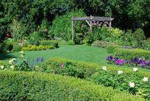 jardins / jardinagem