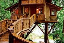 House / Treehouse