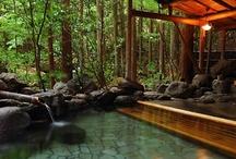 Garden,water features