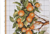 narancs fa