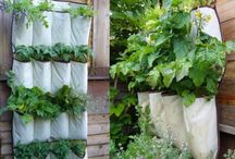 Gardening, Recycling and Upcycling