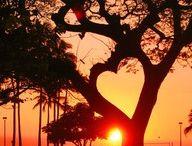 Love is everywhere / by Loreta Bidot