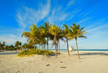 BEACHES / By living at Carbonell condominium you'll have the paradise at your fingertips. The most stunning Miami beaches are no more than 20 min. away from your condo! An example? Here you go; breathtaking Crandon Park Beach, Virginia Key Beach and famous Sobe Miami Beach!