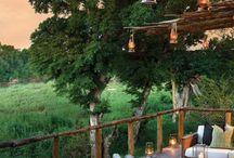 Narina Lodge at Lion Sands Game Reserve