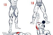 Exercice musculation