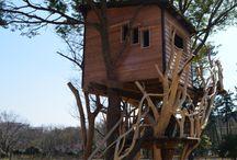 casitas del árbol
