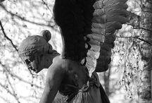 Estátua x Escultura / Sobre a discussão dos  conceitos de estátua e escultura.