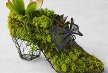 Planter shoes