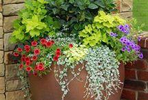 kvetinova dekorace