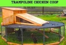 Trampolines recyclen