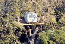 Awesome Treehouses & Tiny Houses / by Mirmy Worm
