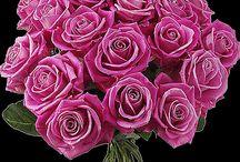 flowers gifs