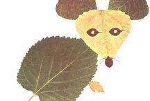 obrazki z liści