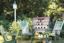 Gardening Ideas / by Nancy Colt