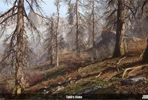 Environment / Forest / Photos, drawings, 3D stills with forest