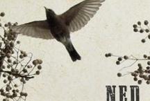 "N.E.D. & ""No Evidence of Disease"""