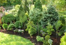 Kész kertek