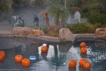 Halloween Pool Ideas