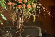 peach wedding flowers / by Toni Smith