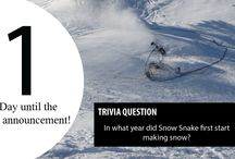 Latest News / The latest from Snow Snake