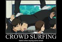 Iwatobi swim club