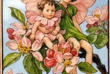 Alfabeto di Cicely Mary Baker / illustrazioni di fate e folletti