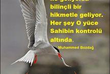 Muhammed Bozdağ / Yazardan ve eserlerinden alıntılar..