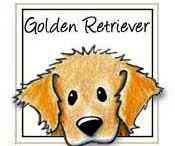 Golden retrieverek