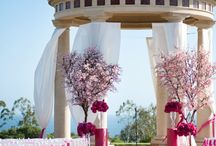 Weddings / by Chasing Bliss Design Dianna Samuels