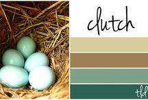 Color Schemes from Nature / by Elaine Kerr