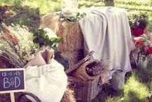 Ceremonias / Recopilación de los momentos más entrañables de las bodas