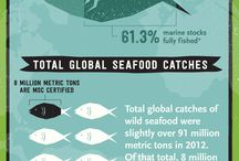 Sustainable Fishery