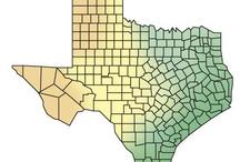 Homeschool {Texas History}