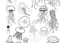Jellyfissh