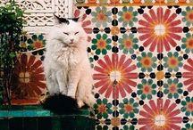 Ceramit, terrazzo, mozaik