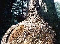 Esculturas fibras vegetales